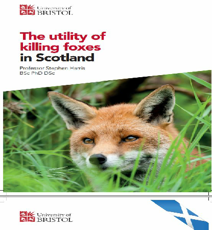 The utility of killing foxes in Scotland